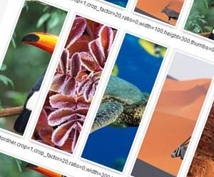Simple Image Gallery Extended (SIGE) Galeria dla Joomla